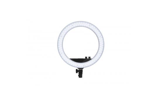 "Nanlite Halo 14U Bi-Color 14"" žiedo formos LED lempa / LED Ring Light"